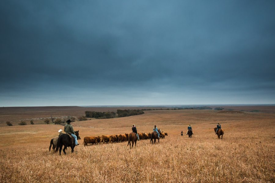 Kansas Western Photography Workshops